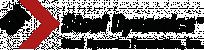 Steel dynamics foundation full logo