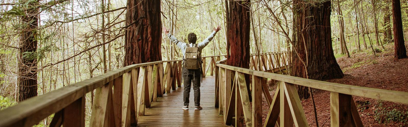 Visit California National Parks Fleetwood RV