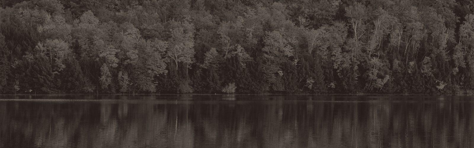 Foliage sepia