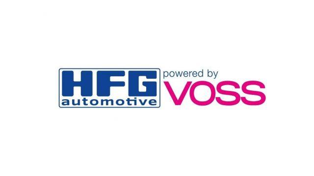 VOSS HENZEL Logo Background